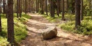 A pedra no caminho, um lindo momento espírita para refletir!