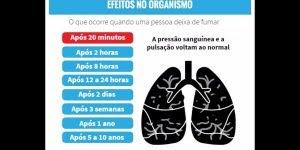 O que acontece quando seu pulmão quando para de fumar, confira!!!