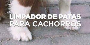 Vídeo interessante mostrando limpador de patas de cachorro!!!