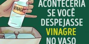 Vinagre no vaso sanitário, você já experimentou? Confira como ele pode ser útil!