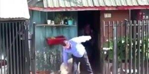 Cachorro ajudando seus donos a carregar as coisas para dentro de casa!