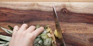 Como cultivar suas próprias frutas, como morango, limão, abacate e muito mais!