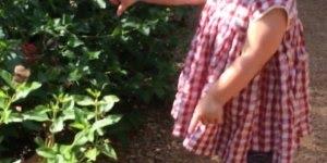 Crianças são fantástica, veja só o encanto dessa garotinha com a butterfly!!!