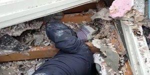 Homem salva filhote que estava preso entre os escombros depois de um tornado!!!