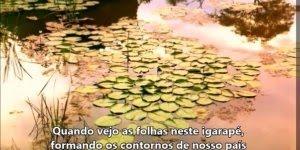 Lindo poema Ruínas de Florbela Espanca, vale a pena conferir!!!