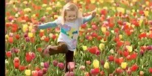 Mensagem para desejar a todos amigos um dia abençoado, cheio de paz e harmonia!