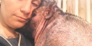 Muito legal esse vídeo! Quando a amor e respeito os animais retribuem!!!