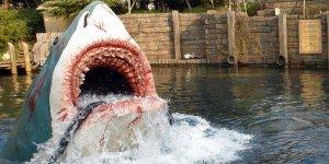 Passeio de barco com efeitos realistas, que medo desse tubarão!