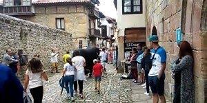 Solução para as touradas de rua, bem mais divertido e não judia dos animais!