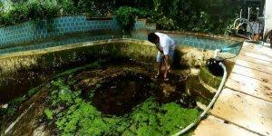 Transformação incrível em uma piscina, ela ficou irreconhecível!