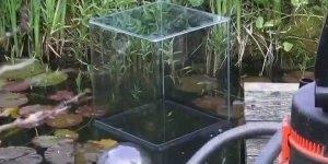 Vídeo com aquário invertido dentro de laguinho, simplesmente fantastico!!!