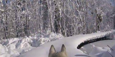 Jornada incrível pela neve, é simplesmente fantástico os lugares!!!