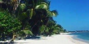 Praia em Tulum, olha só que lindo este lugar, a natureza é linda!!!