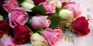 Vídeo com lindas fotos de rosas para deixar seu dia mais colorido!!!