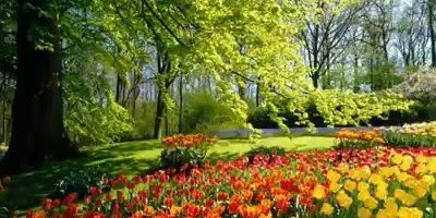 Vídeo com lindas paisagens de nosso exuberante planeta, magnifico as imagens!!!
