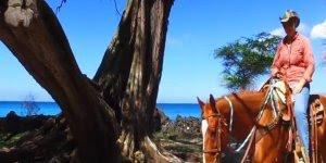 Vídeo com lindos lugares do Hawaii, um lugar maravilhoso para se conhecer!!!