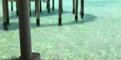 Vídeo mostrando como são os chalés nas Ilhas Maldivas, um lugar lindíssimo!!!