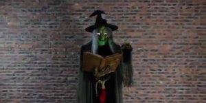 Com a chegada do Halloween veja só esta bruxa fantástica, muito legal!!!