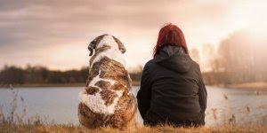 Mensagem para amigos verdadeiros! Amizade verdadeira é um tesouro!!!