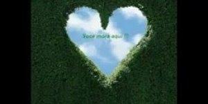 Mensagem de Amor para alguém especial! Você esta dentro do meu coração!!!
