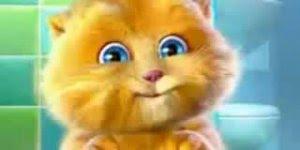 Vídeo com gatinho cantando para enviar para amigo ou amiga!!!