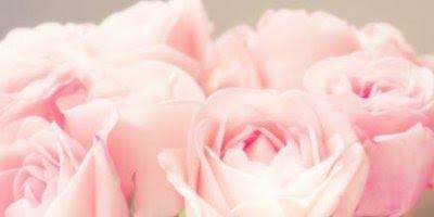 Vídeo com mensagem de amor. Você é meu maior presente, te amo!!!