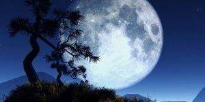 Boa Noite com Deus, compartilhe no Facebook com seus amigos!