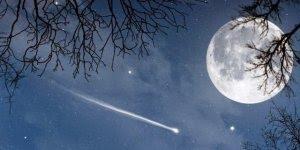 Boa Noite meu amor, que Deus lhe proteja e te de muita paz e serenidade!!!