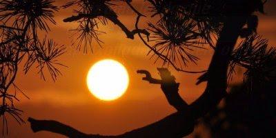 Mensagem de amor para desejar boa noite, não existe amor impossível!
