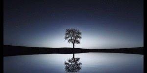 Mensagem de Boa Noite com reflexão. Para tudo na vida há um novo dia!!!