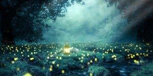 Mensagem de Boa Noite. Desejo a você uma noite de sono leve, cheio de harmonia!