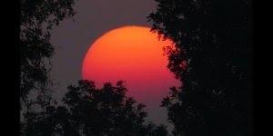 Mensagem de Boa Noite para amigo. Tenha uma noite calma e tranquila!!!