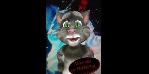 Mensagem de boa noite para Whatsapp, com gatinho fazendo agradecimento!