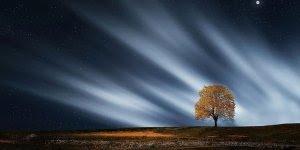 Mensagem de Boa Noite. Que a paz interior esteja sempre com você!!!