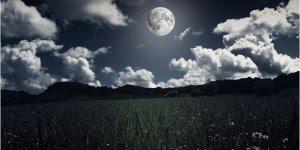 Mensagem de Boa Noite, que sua noite seja especial, de muita paz e harmonia!!!