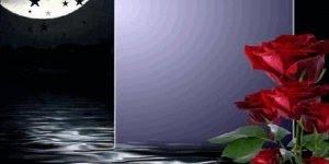 Mensagem linda de boa noite, que você seja abençoado por Deus !!