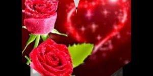 Mensagem super romântica de boa noite, para ser enviada ao seu grande amor!!!