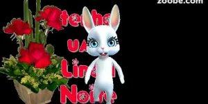 Que mensagem mais fofa de boa noite com esse coelhinho lindinho !!