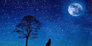 Vídeo com mensagem de Boa Noite para grupo de WhatsApp! Lindos sonhos a todos!!