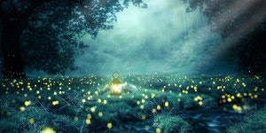 Vídeo com mensagem de Boa Noite. Que os anjos protejam seu sono!!!