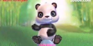 Vídeo com ursinho panda para desejar uma ótima noite para Whatsapp!