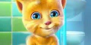 Vídeo de boa noite com gatinho, para desejar um soninho muito gostoso!