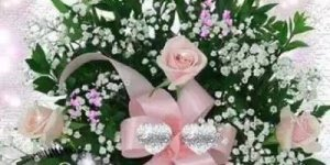Vídeo de Boa Noite com muitas flores lindas, para colorir a noite de amigos!