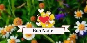 Vídeo de Boa Noite para amiga com rosas, para enviar pelo Whatsapp!