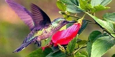 Boa Tarde! Todo acontecimento é fruto do que plantamos, cultive coisas boas!!!
