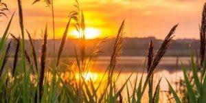Mensagem de boa tarde com Deus - Onde Ele está nada falta!