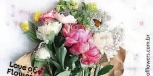 Mensagem de Boa Tarde para amiga! Que sua tarde seja abençoada por Deus!!!