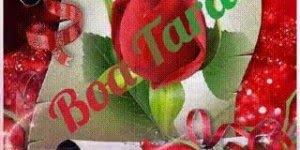 Mensagem de Boa Tarde para pessoa especial! Você é importante para mim!!!