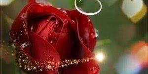 Mensagem de Boa Tarde! Só passando para te desejar uma linda tarde!!!