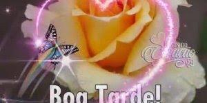 Vídeo de mensagem de Boa Tarde para amigo e amiga! Tenha uma feliz tarde!!!